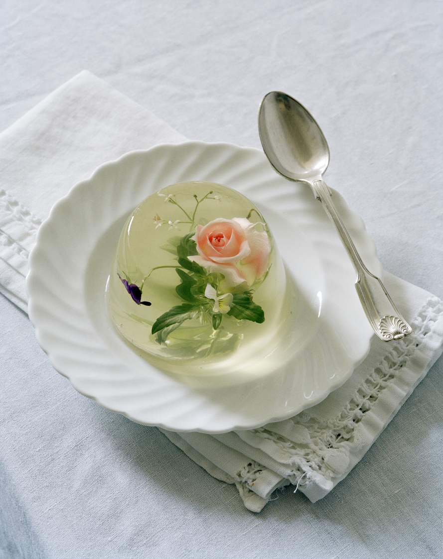 tim walker jello flowers rhea thierstein
